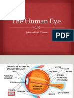 Science-Report