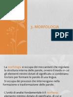 3. Morfologia.pdf