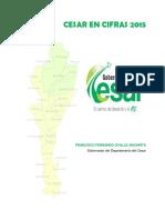 CESAR EN CIFRAS 2015 FINAL-3pdf