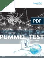 PUMMEL_Book.pdf