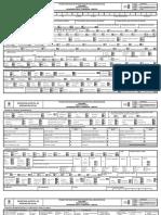 Formato PDF editable Ficha SIRBE servicios sociales Información básica y transversal cabezoteFOR-PSS-321 (1) (1) (2)