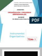 1 INSTRUMENTOS ORGANIZATIVOS (2)