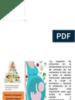 Alimentación adecuada de la Gestante.pdf