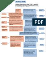 mapa conceptual toxicologia.docx