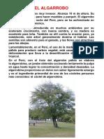 FLORA COSTA - EL ALGARROBO.pdf