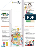 folleto diseño curricular