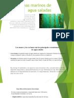 biomas marinos de agua saladas (1)