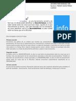 Performance pruebas Freddy Perez.pdf