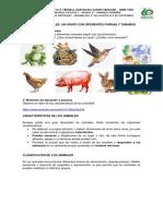 NATURALES Los Animales Vertebrados e Invertebrados Agosto 17 a Sept 4