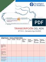 Transcripción del ADN1.pptx