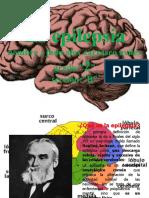 la epilepcia