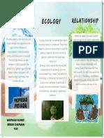 infografia ecology