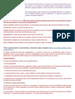 ARMUMENTATIVO TEORICO VARIO.docx