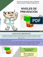 2.1 Niveles de Prevención