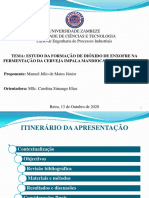 2020 - Junior, Manuel J. M. pptx.pdf