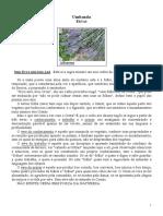 30 ERVAS UMBANDA.pdf