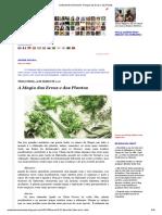 Umbanda Em Movimento_ A Magia das Ervas e das Plantas.pdf