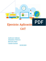 PRUEBA CAT.docx
