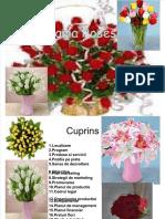 plan-de-afaceri-florarie