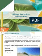 Génese_das_rochas_sedimentares