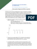 página 28 y 29.Traducción