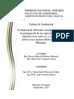 Evaluación de diferentes sustratos usados en la propagación de las especies de nopal