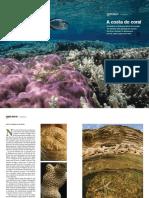 NGP_09_11_GrandeAngular(Corais).pdf