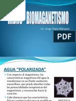 Hidro-biomagnetismo 2009.pdf