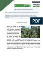 FICHA AUTOAPRENDIZAJE CICLO VI CIENCIA Y TECNOLOGIA SEMANA 2.pdf