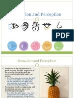 4. Sensation and Perception