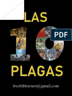 LAS 10 PLAGAS (Tour Highlights)