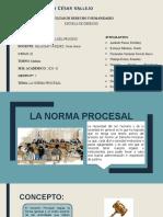 LA NORMA PROCESAL-1.pptx