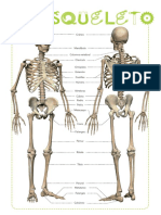 et03348301_01_pv_01_esqueleto