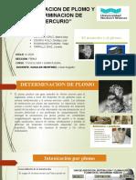 PLOMO Y MERCURIO