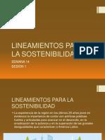SEMANA 14 SESION 1 LINEAMIENTOS PARA LA SOSTENIBILIDAD.pdf