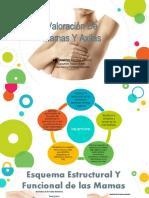 semiologia mamas y axilas (1).pptx