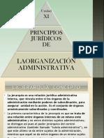 Derecho Público - Unidad XI