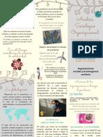 Análisis Sociológico Organizacional_Folleto_Leidy