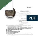 Descripcion de rocas metamorficas