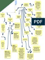 Mapa Conceptual - Pensamiento Bolivariano