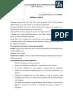 Informe diario 2