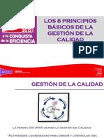 8 Principios de Calidad 30 Abr 12.pdf