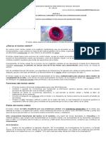GUIA 2 BIOLOGIA 8o. 2020.docx