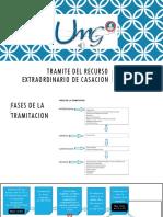 TRAMITE DEL RECURSO EXTRAORDINARIO  DE CASACION (1)