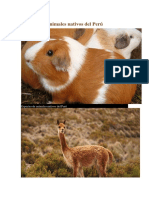 BIODIVERSIDAD DE ANIMALES PERUANOS
