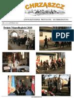 Chrząszcz - Listopad 2010 (nr 56)