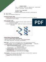NUCLEIC-ACIDS.docx