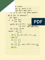 Determinant_of_a_Matrix.pdf