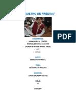 REGISTRO DE PREDIOS-EXPO.docx