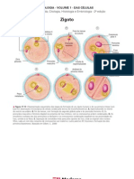 Biologia - Volume 01 - Das Células 18 Zigoto